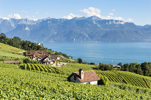 Village in Lavaux vineyard near Montreux by the Genev