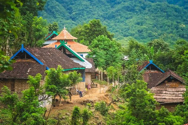 Village in the jungle picture id922689740?b=1&k=6&m=922689740&s=612x612&w=0&h=rrikmulok55n4uiwbo1a6yye89ct0hhnyjb1amplt9y=