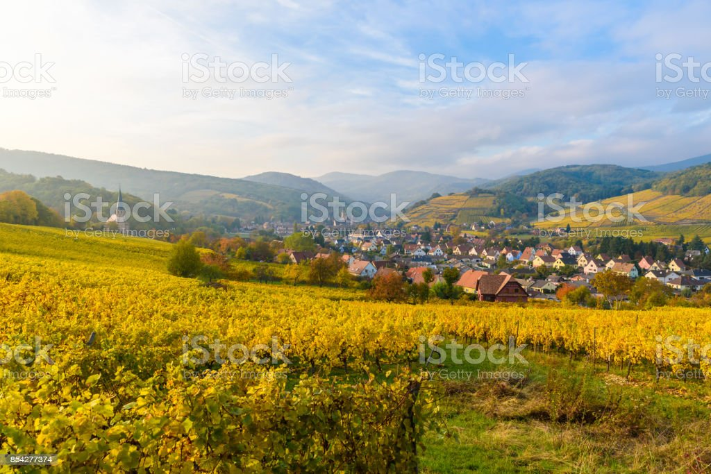 Village of Barr in Vineyard landscape in region Alsace, France stock photo