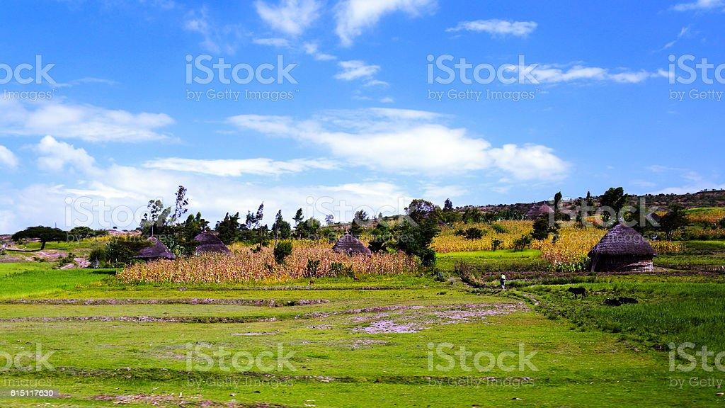 Village of konso tribe stock photo