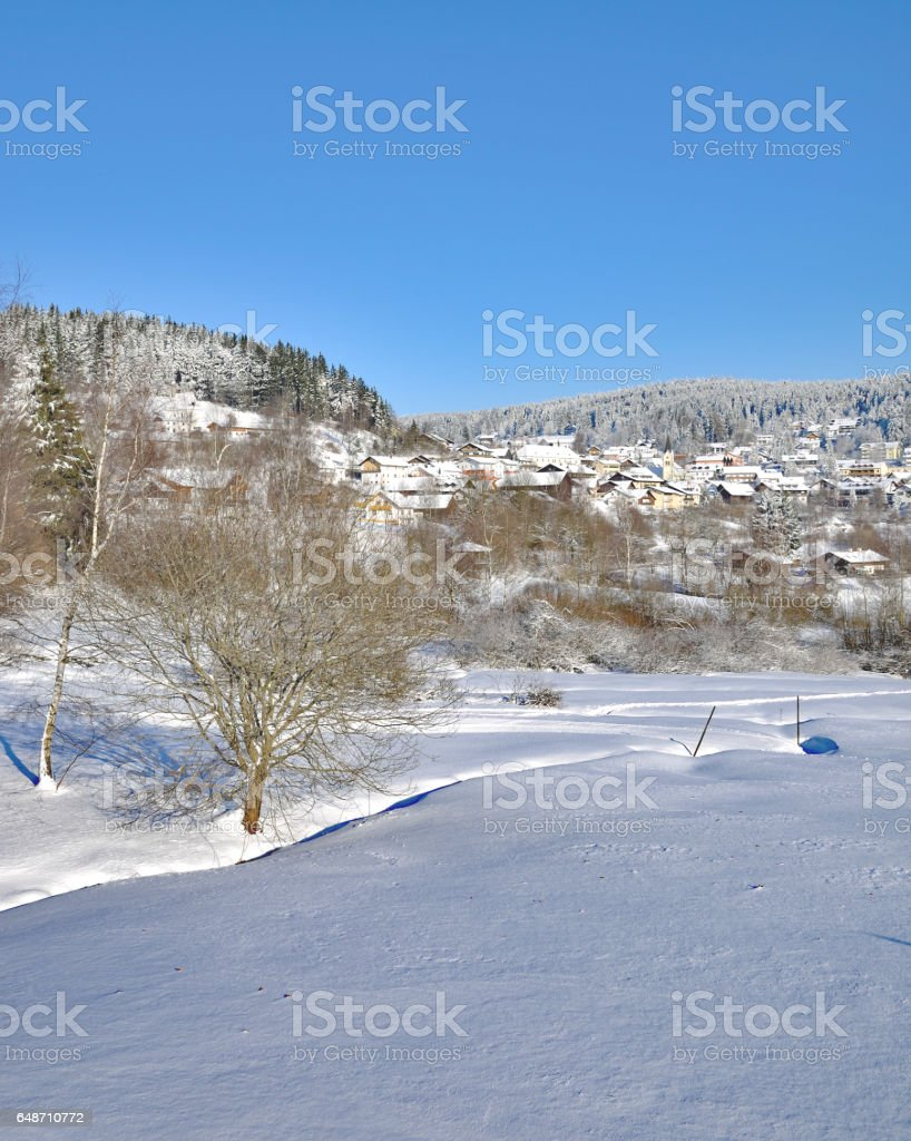 Village of Sankt Englmar,bavarian Forest,Germany stock photo