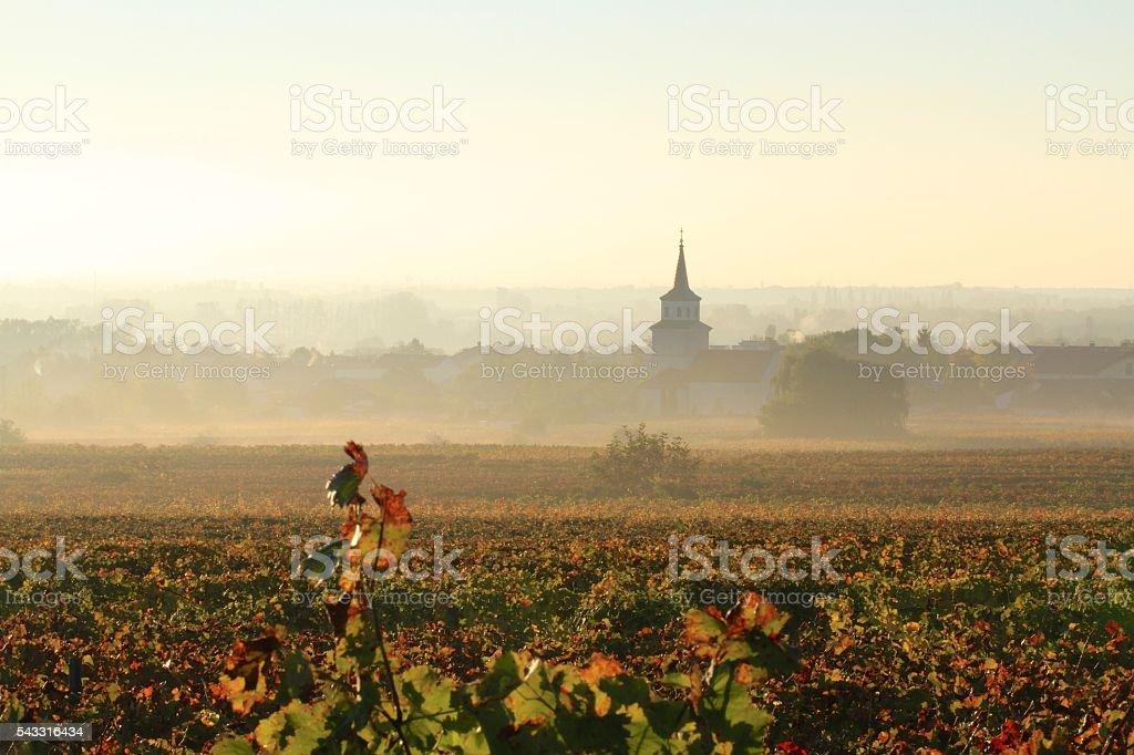 Village of Sooss, Lower Austria stock photo