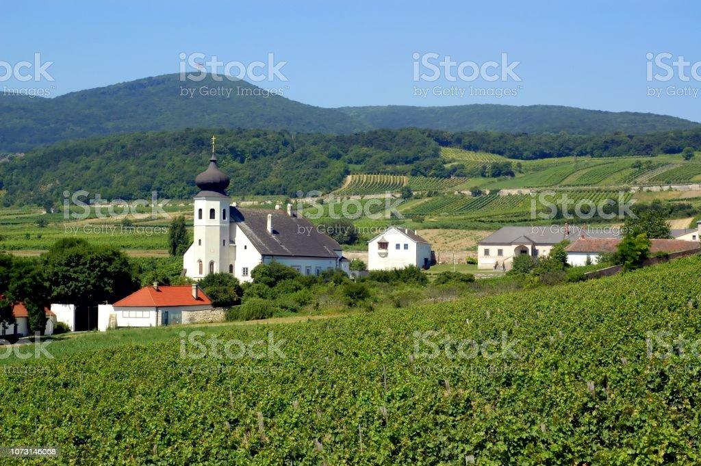 Dorf von Thallern in Österreich, Sommer, Weinberge, ländliche Siedlung – Foto