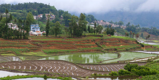 Village over terraced rice fields in Yuanyang, Yunnan, China stock photo