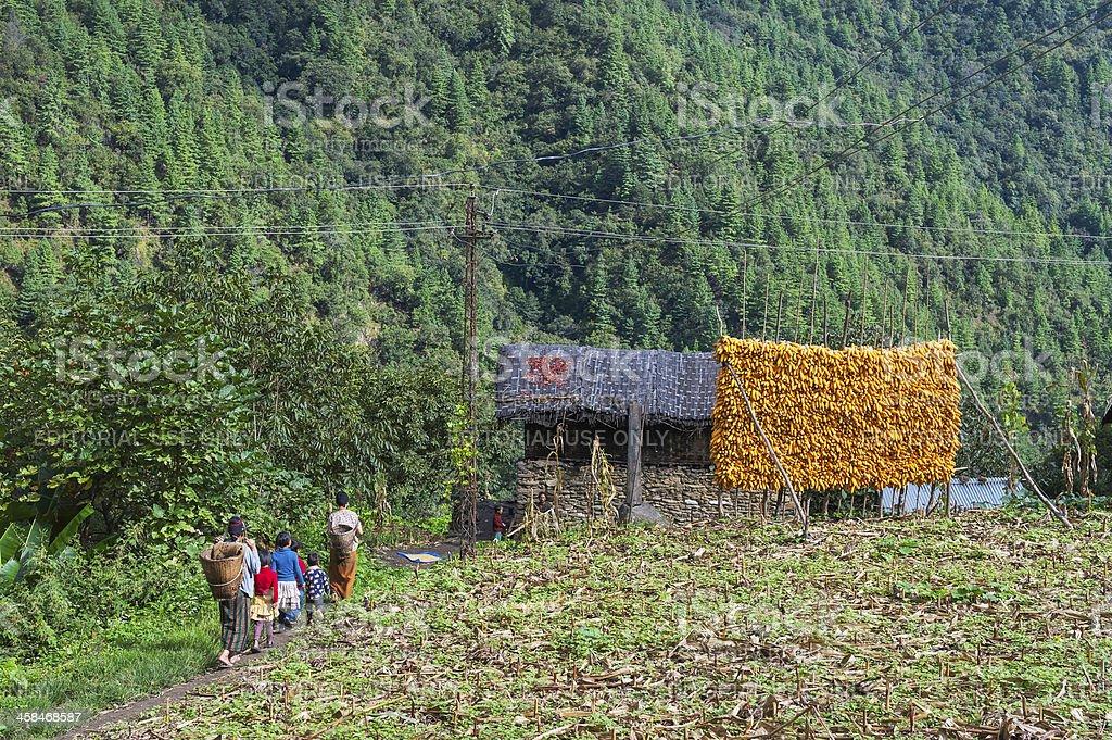 Village scene on the high slopes, western Arunachal Pradesh, India. stock photo
