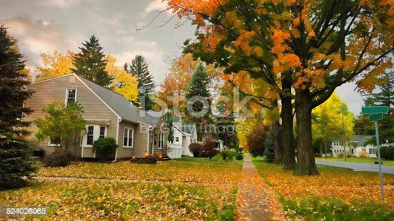 istock village street in autumn 524026085