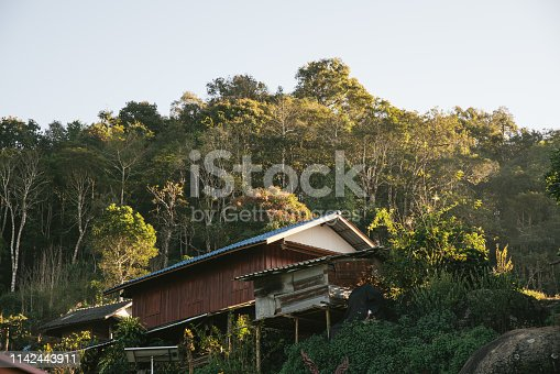 Villager's house with trees and mountain in the background in the Akha village of Maejantai on the hill in Chiang Mai, Thailand.