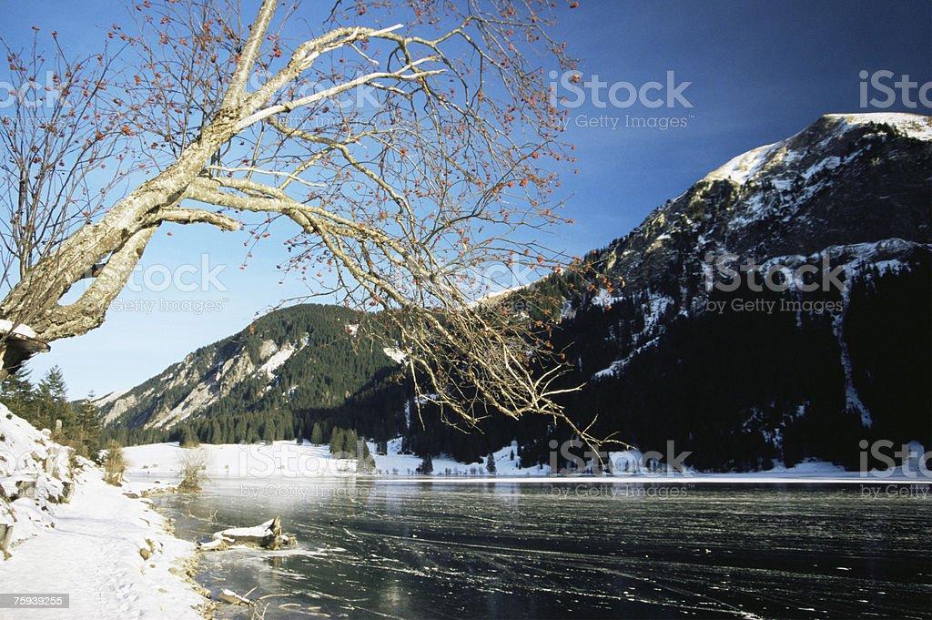 Lago no Inverno Vils am foto de stock royalty-free