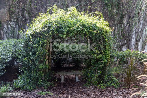 istock Vine Arch 1278523984