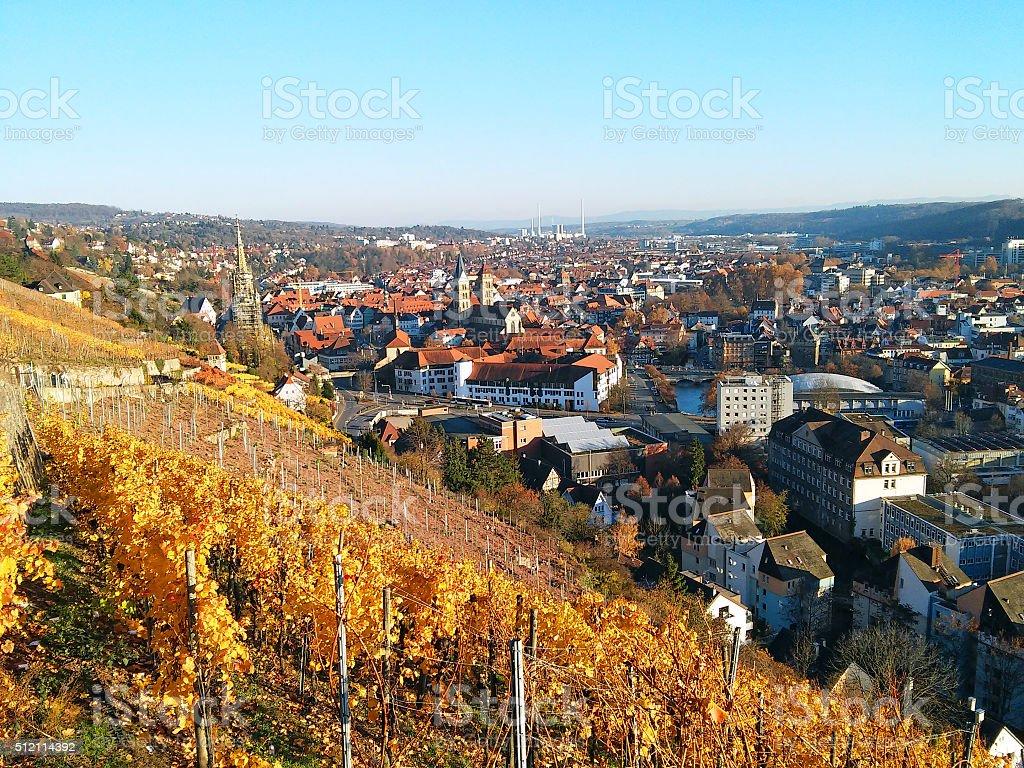 Vineyard and Esslingen stock photo