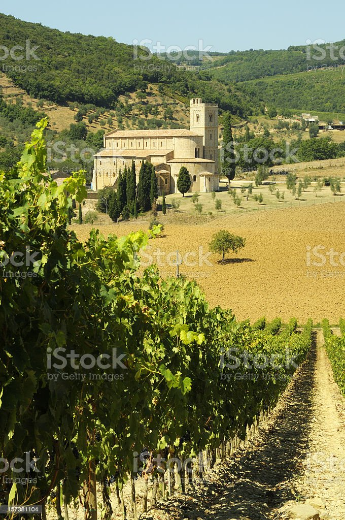 Vineyard and Medieval Abbey in Tuscany royalty-free stock photo