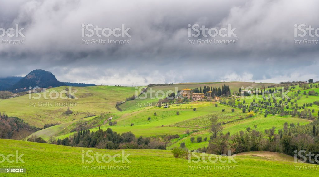 Vineyard and Olive grove landscape royalty-free stock photo