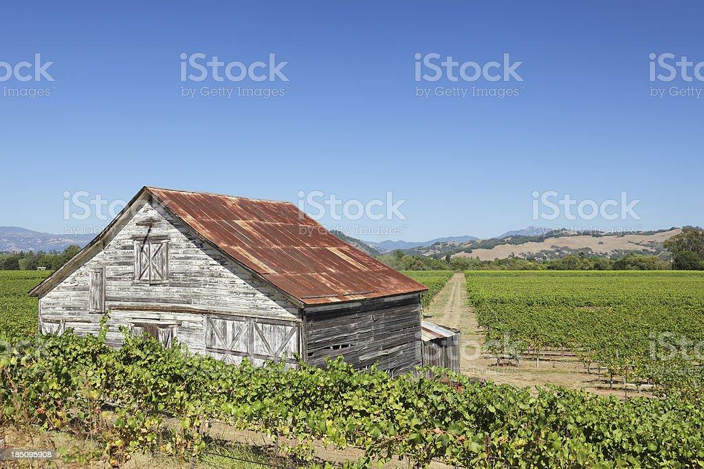 Vineyard Barn royalty-free stock photo