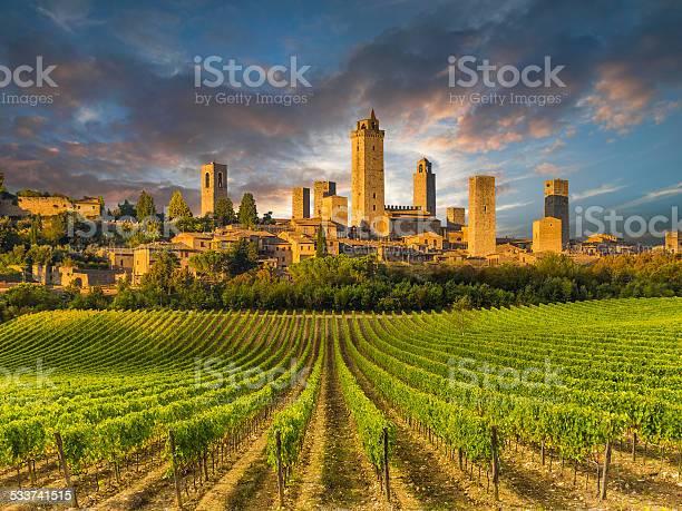 Vineyard covered hills of tuscanyitaly picture id533741515?b=1&k=6&m=533741515&s=612x612&h=jwqyhua6bxws4okz64b e h oiqxuieecfz8yu9oeum=