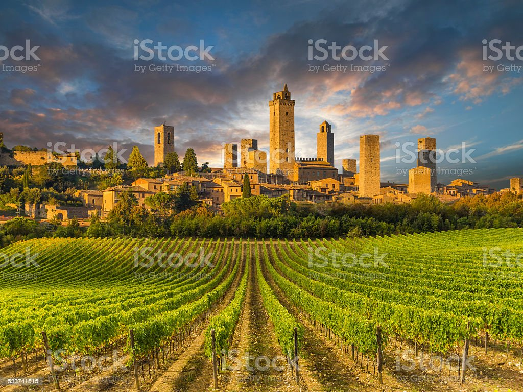 Vineyard covered hills of Tuscany,Italy stock photo