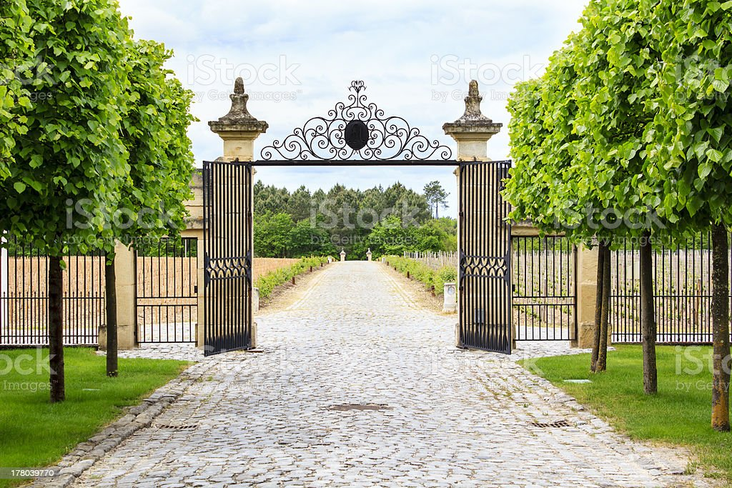 Vineyard entrance stock photo