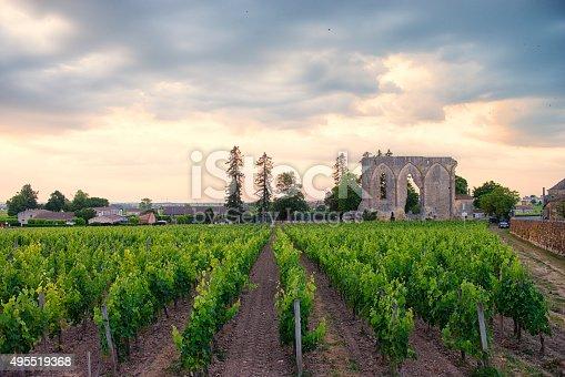 A vineyard near Bordeaux