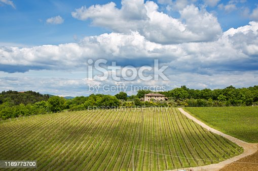 The scenic Tuscan hills around the city of Florence. A Chianti vineyard in Tuscany, Italy. The Chianti region, one of the famous wine region of Italy.