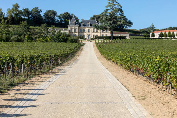 Vineyard of Chateau Fonplegade - name (literally fountain of plenty) was derived from the historic 13th century stone fountain that graces the estate's vineyard. St Emilion, France
