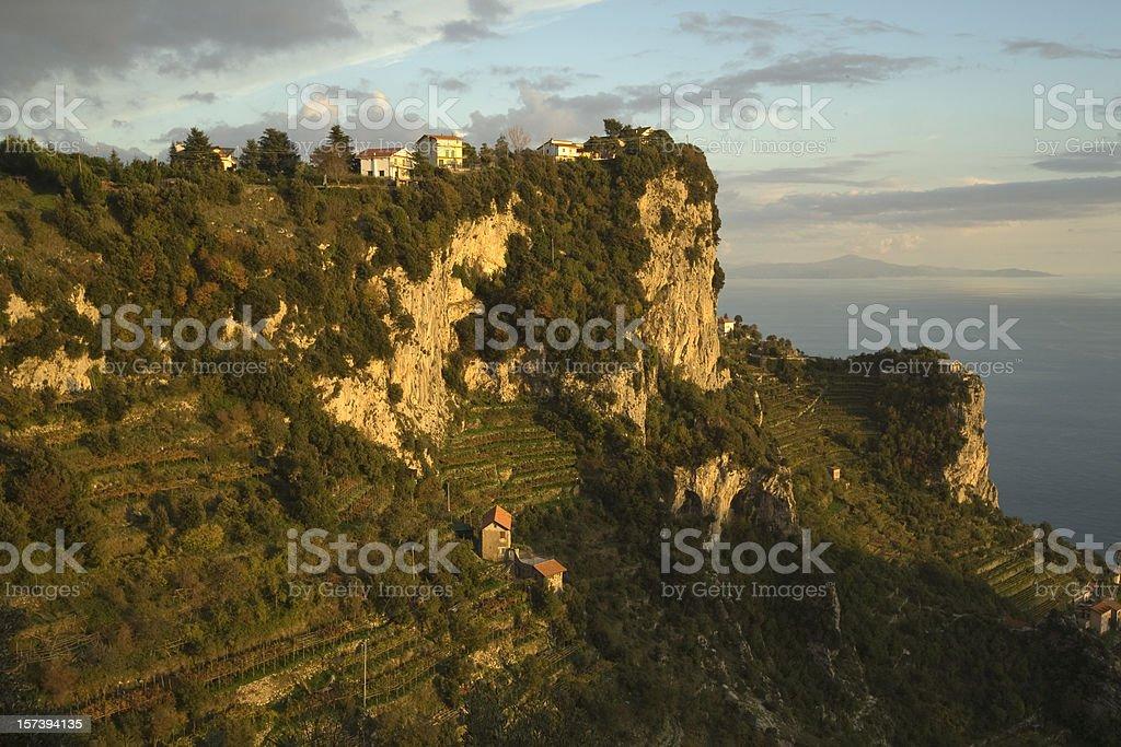Vineyard on the Amalfi coast royalty-free stock photo
