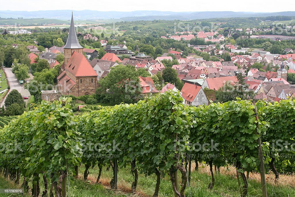 vineyard rows in a german town royalty-free stock photo