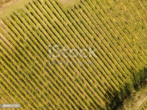 istock Vineyard Saale-Unstrut from above, Freyburg, Germany 869655082