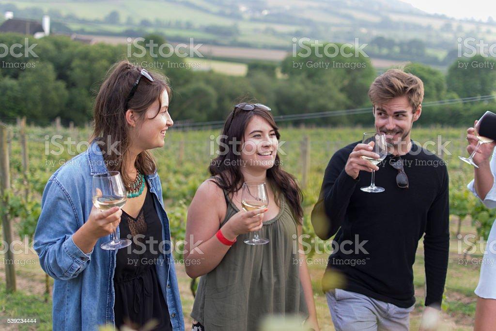 Vineyard smiles royalty-free stock photo