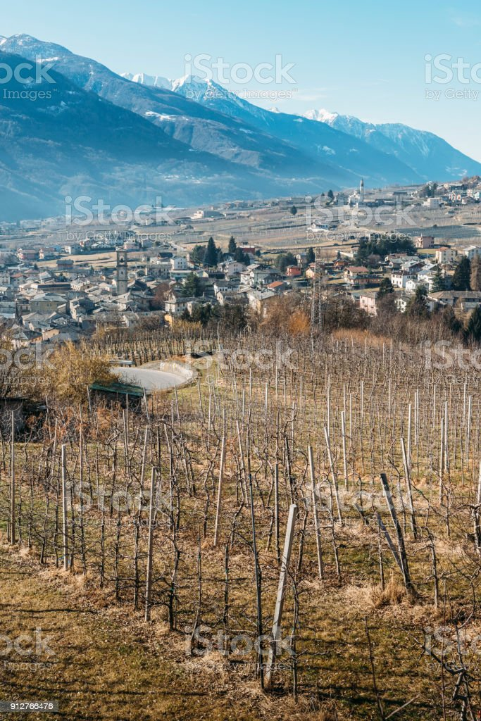 Vineyards above Sondrio an Italian town and comune located in the heart of the wine-producing Valtellina region - Population 20,000 stock photo