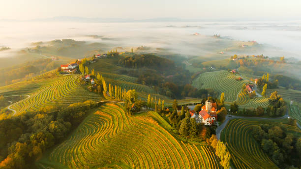 Vineyards and houses on hills, Jeruzalem, Slovenske Gorice, Prlekija, Styria, Slovenia stock photo