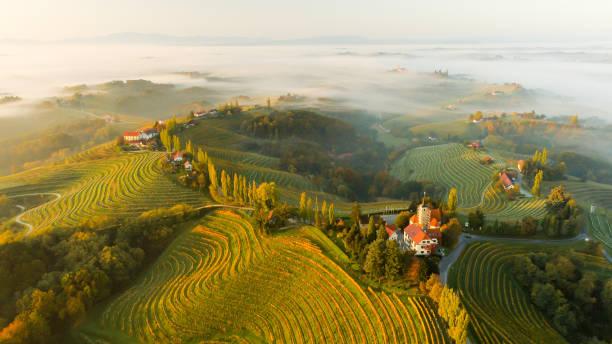 vignobles et maisons sur les collines, jeruzalem, slovenske gorice, prlekija, styrie, slovénie - slovénie photos et images de collection