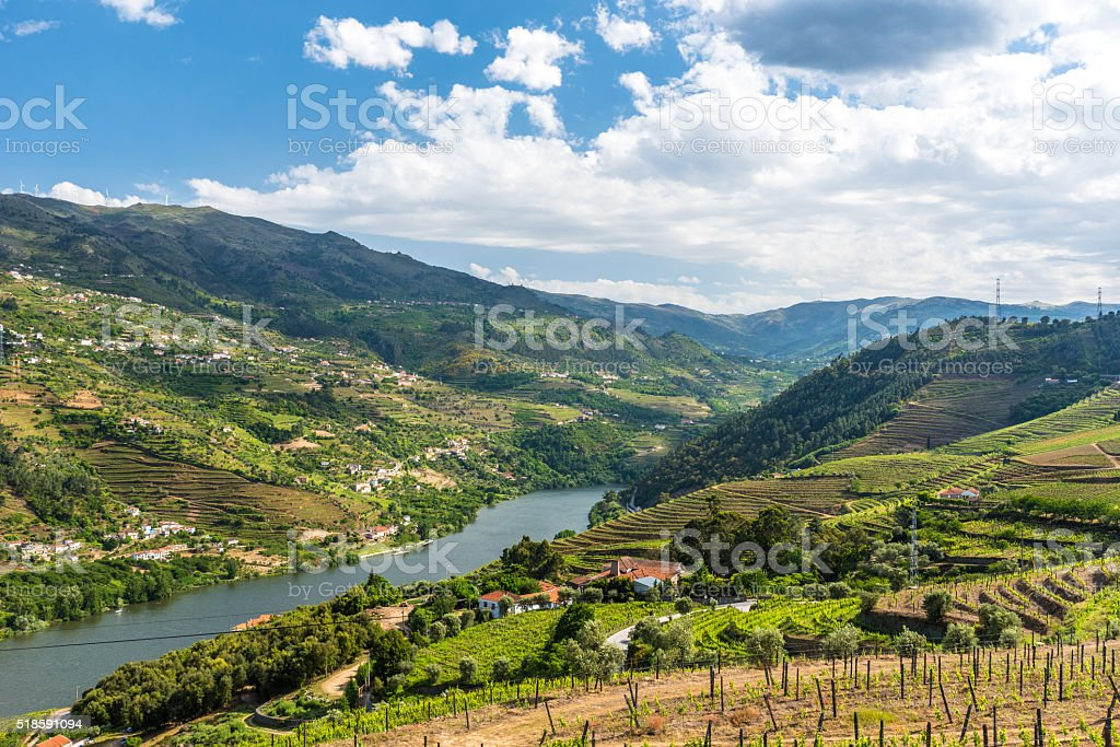 Vineyards and Landscape of the Douro river region in Portugal stock photo