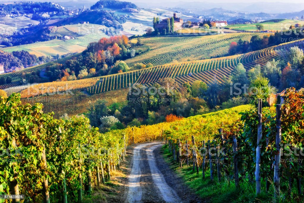 Vineyards and of Piemonte in autumn colors. North of Italy - foto stock