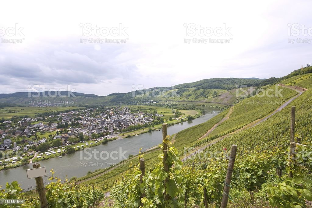 Vineyards and Village royalty-free stock photo