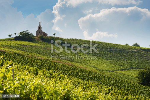 View at the vineyards of Fleurie and the chapel