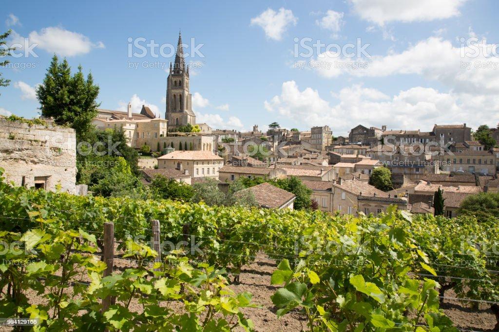 Vineyards at Saint Emilion city center, France stock photo