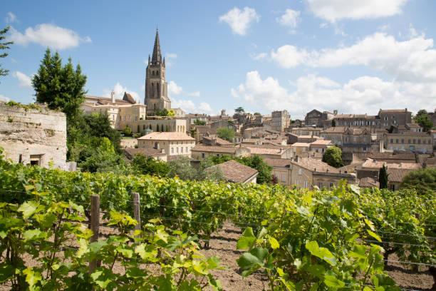 Vineyards at Saint Emilion city center, France landscape view of Saint Emilion village in Bordeaux region in France bordeaux stock pictures, royalty-free photos & images