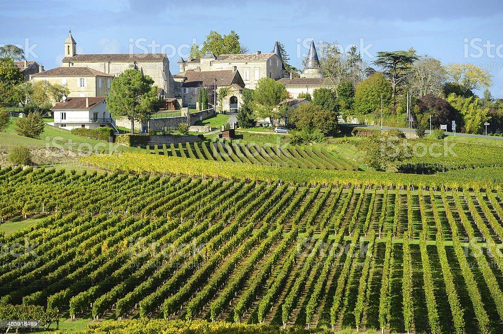 Vignobles Bordeaux Saint-Emilion - Photo