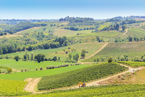 Vineyards Farms And Farmhouses In Tuscany Farmland Italy Stock Photo