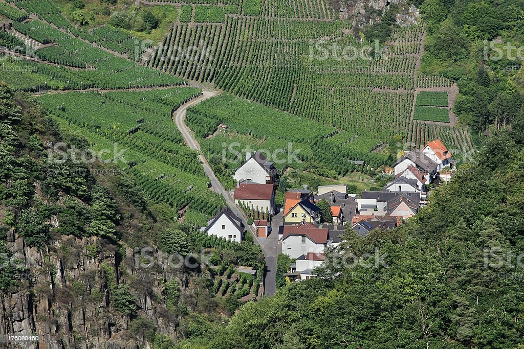 Vineyards in Germany royalty-free stock photo