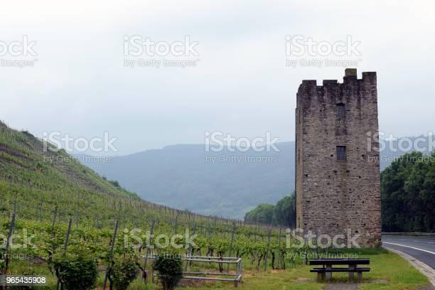 Winnice W Dolinie Mozeli W Niemczech - zdjęcia stockowe i więcej obrazów Bez ludzi