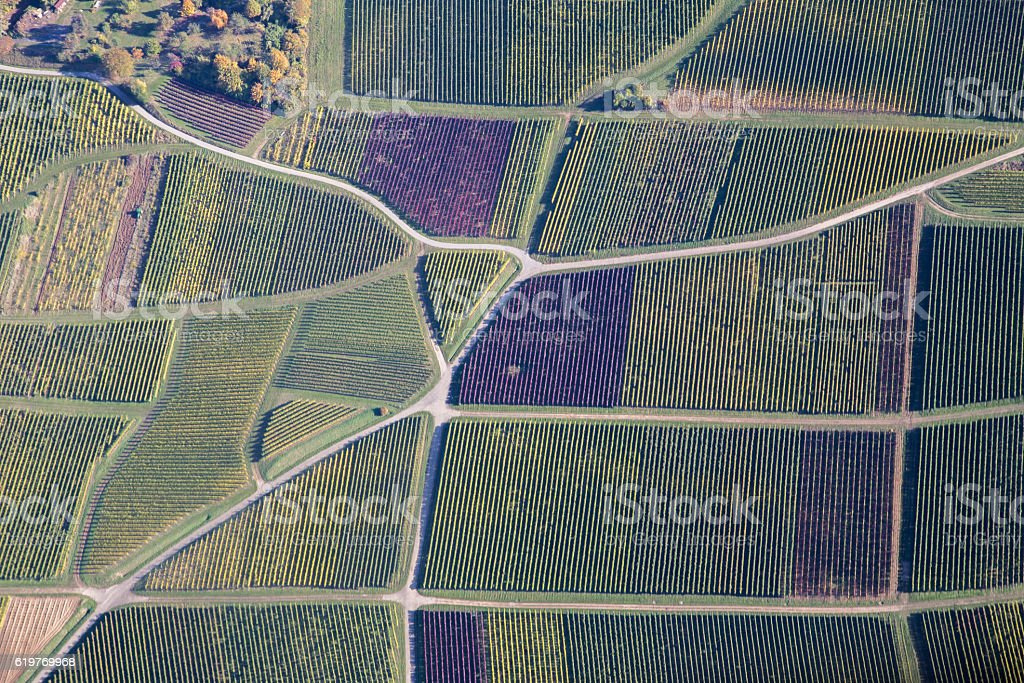 Vineyards in Southern Germany stock photo