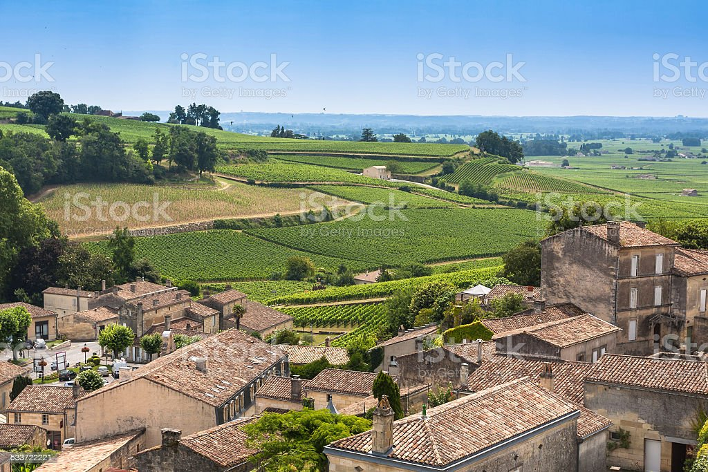 Vineyards in St. Emilion, France stock photo