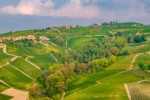 948424058 istock photo Vineyards in the Langhe, a hilly area mostly based on vine cultivation and well known for the production of Barolo wine. Province of Cuneo, Piedmont, Italy 948421406