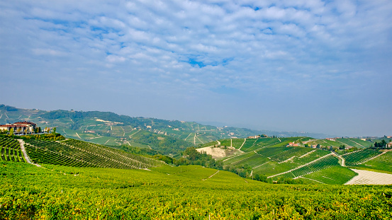 948424058 istock photo Vineyards in the Langhe, a hilly area mostly based on vine cultivation and well known for the production of Barolo wine. Province of Cuneo, Piedmont, Italy 948423992