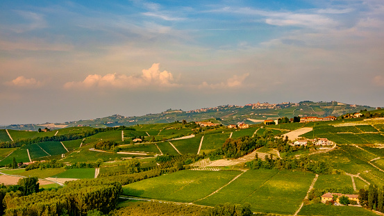 948424058 istock photo Vineyards in the Langhe, a hilly area mostly based on vine cultivation and well known for the production of Barolo wine. Province of Cuneo, Piedmont, Italy 948424168
