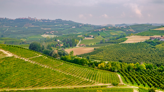 948424058 istock photo Vineyards in the Langhe, a hilly area mostly based on vine cultivation and well known for the production of Barolo wine. Province of Cuneo, Piedmont, Italy 948426082