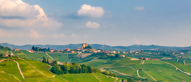 948424058 istock photo Vineyards in the Langhe, a hilly area mostly based on vine cultivation and well known for the production of Barolo wine. Province of Cuneo, Piedmont, Italy 948426124