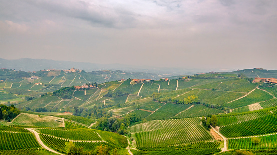 948424058 istock photo Vineyards in the Langhe, a hilly area mostly based on vine cultivation and well known for the production of Barolo wine. Province of Cuneo, Piedmont, Italy 948426326