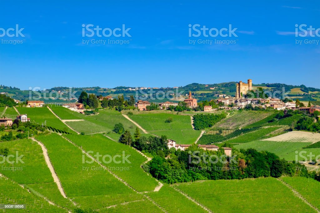 Vineyards in the Langhe, a hilly area mostly based on vine cultivation and well known for the production of Barolo wine. Piedmont, Italy stock photo