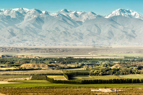 Vineyards in the Uco Valley, Tupungato, Mendoza, Argentina. stock photo